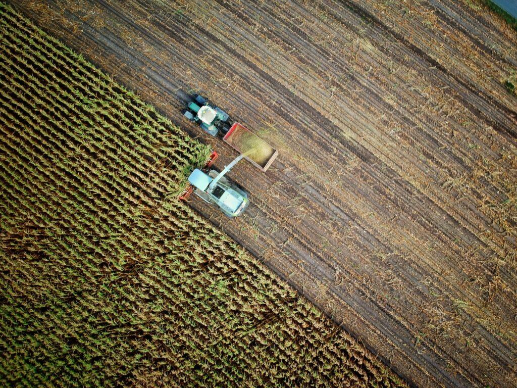 ONU pede transformação dos sistemas alimentares mundiais para combater fome